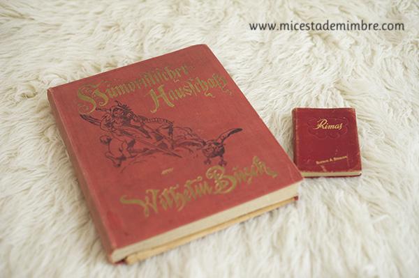 libros antiguos 2 Mis libros antiguos.