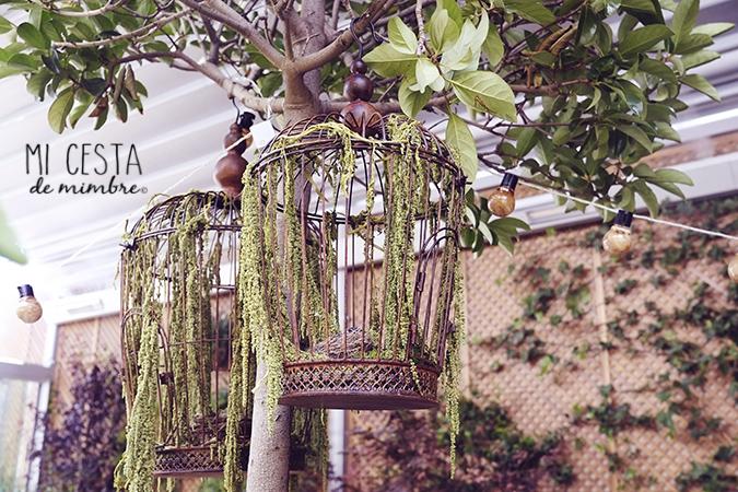Cafeteria el jardin secreto de salvador bachiller mi for Jardin secreto montera