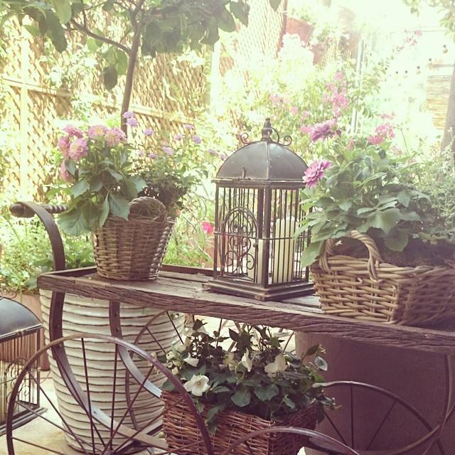 mañana de reunion y toma de decisiones ¡cuando trabajamos en un sitio asi las ideas florecen! gracias a @salvadorbachiller por invitarnos a comer en su #jardinsecreto